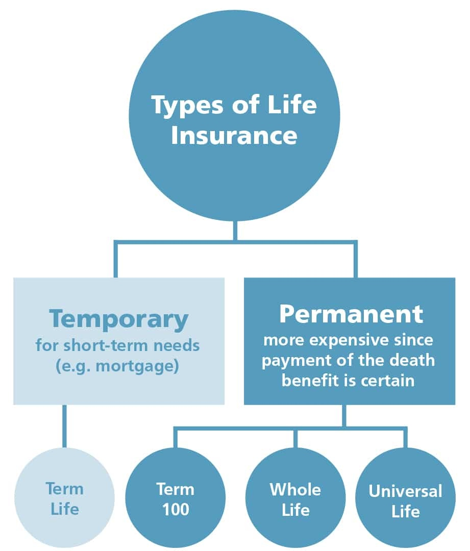 The facts of life (insurance) - BNN Bloomberg
