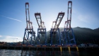 Container cranes stand at the Fairview Container terminal of the Port of Prince Rupert in Prince Rupert, British Columbia, Canada, on Tuesday, Aug. 23, 2016.