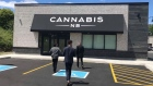 Cannabis NB