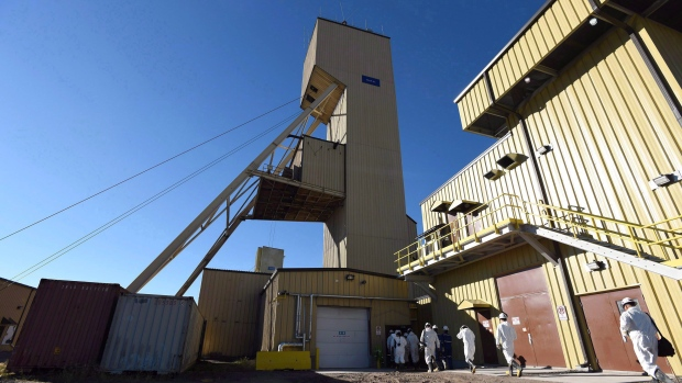 Cameco shares down after company says it is