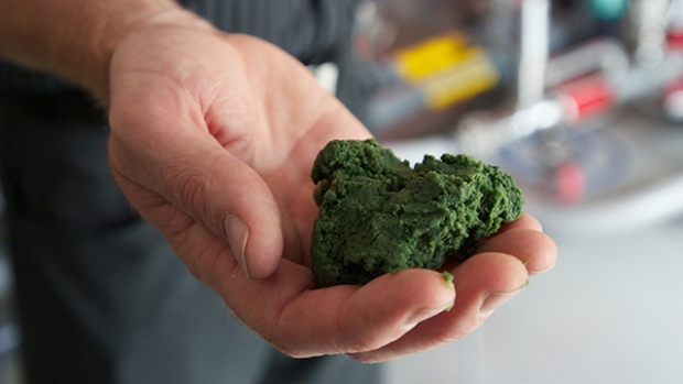 Algae biomass is a versatile feedstock for food, feed, and industrial bioproducts.