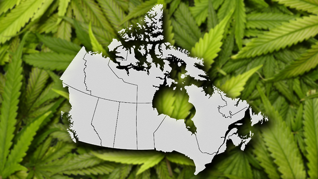 Canada cannabis entrepreneurs 'could face United States  lifetime ban'