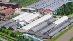 Crop Intrastructure's 87, 120 square foot greenhouse facility in Italy.