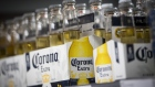 Bottles of Constellation Brands Inc. Corona beer sit on display for sale inside a BevMo Holdings LLC store in Walnut Creek, California, U.S., on Wednesday, Jan. 3, 2018. Constellation Brands Inc. is scheduled to release earnings figures on January 5.