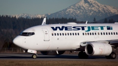 A pilot taxis a Westjet Boeing 737-700 plane to a gate in Richmond