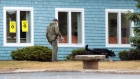 An RCMP officer and his dog search the exterior of the Assumption Parish Centre in Stratford, P.E.I.