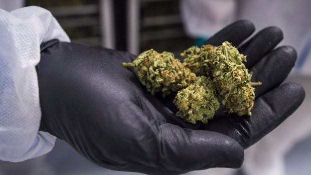 CannTrust's Danish partner quarantines pot products linked to illegal growing