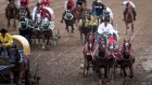 Teams compete in a chuckwagon race at the Calgary Stampede in Calgary, Monday, July 12, 2010.