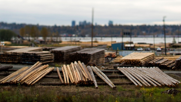 Logs sit piled up in this photo taken with a tilt-shift lens at a Stella Jones timber yard in Vancou