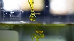 A sample of water-soluble full spectrum cannabidiol (CBD) oil is dropped into water inside the laboratory.