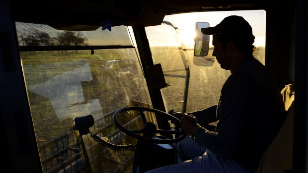 Argentina Soy Crushers Meet With China on Path to Meal