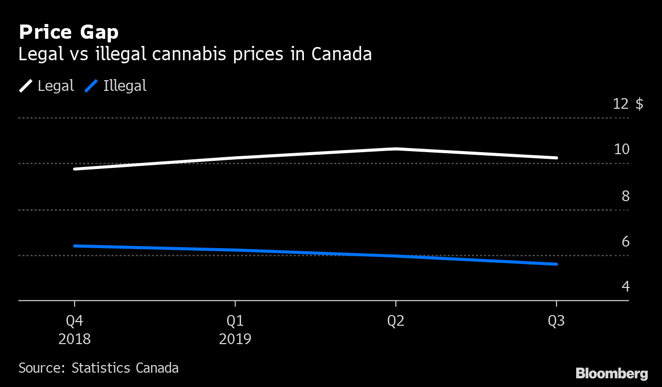 Cannabis 'gold rush' falling short amid cheap black market