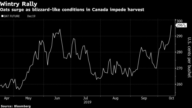 BC-Wondering-If-Wintry-Weather-Is-Affecting-Grain-Markets?-Ask-Oats
