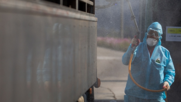 A worker sprays disinfectant onto the back of a truck near a pig farm in Yeoncheon, South Korea.