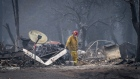 A firefighter searches a burned-out building in Paradise, California, U.S., on Thursday, Nov. 15, 2018. The number of acres burned in the blazes -- including the Hill and Woolsey fires in Southern California, and the Camp fire in Northern California, which has killed at least 48 people and destroyed the city of Paradise -- already is higher than the total burned in wildfires last year, A.M. Best Co. wrote in a report late Tuesday.