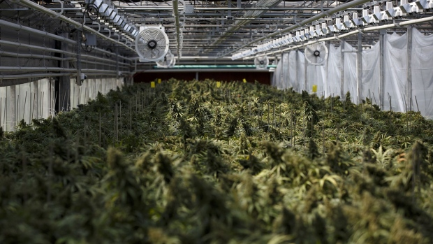Canopy Growth (NYSE:CGC) PT Lowered to $17.00