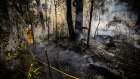 "A New South Wales (NSW) Rural Fire Service volunteer douses a fire during back-burning operations in bushland near the town of Kulnura, New South Wales, Australia on Thursday, Dec. 12, 2019. The smoke blanketing Sydney is a ""public health emergency,"" according to a coalition of Australian doctors and researchers who say climate change has helped fuel the wildfires that have produced unprecedented haze."