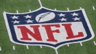 EAST RUTHERFORD, NJ - JANUARY 08: A detail of the official National Football League NFL logo is seen painted on the turf as the New York Giants host the Atlanta Falcons during their NFC Wild Card Playoff game at MetLife Stadium on January 8, 2012 in East Rutherford, New Jersey. (Photo by Nick Laham/Getty Images) Photographer: Nick Laham/Getty Images North America