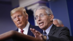 Anthony Fauci, director of the National Institute of Allergy and Infectious Diseases, speaks as U.S. President Donald Trump, left, listens during a Coronavirus Task Force news conference in the briefing room of the White House in Washington, D.C., U.S., on Friday, March 20, 2020. Americans will have to practice social distancing for at least several more weeks to mitigate U.S. cases of Covid-19, Anthony S. Fauci of the National Institutes of Health said today. Photographer: Al Drago/Bloomberg