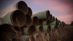 Miles of unused pipe, prepared for the proposed Keystone XL pipeline, sit in a lot on October 14, 2014 outside Gascoyne, North Dakota. (Photo by Andrew Burton/Getty Images)