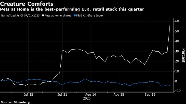 Lockdown Dogs Drive Britain S Hottest Retail Stock Bnn Bloomberg
