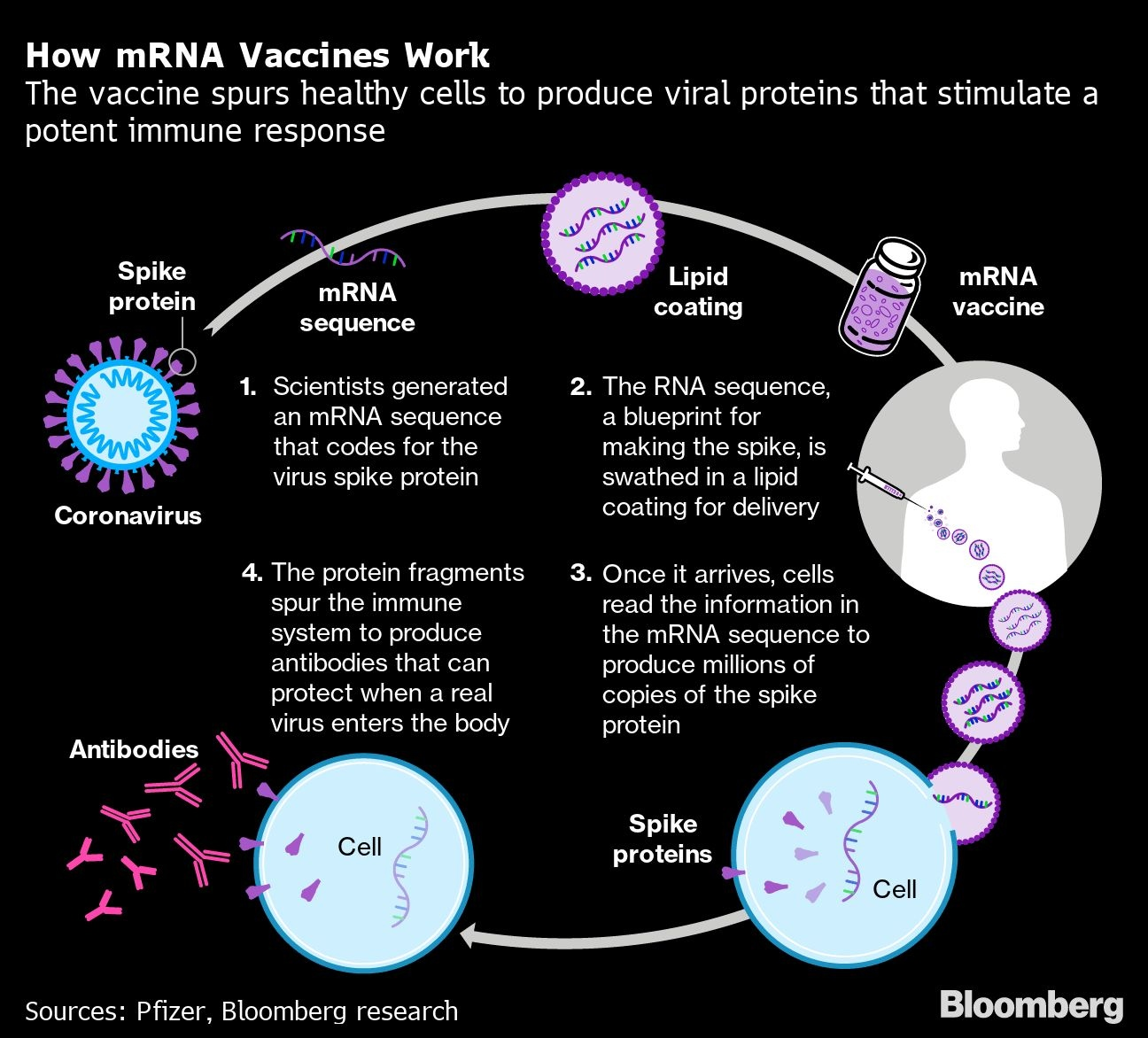 Moderna Pfizer Vaccines Look Strong Here S How They Stack Up Bnn Bloomberg