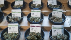 Different strains of cannabis are displayed for sale at the Harborside dispensary in Oakland, California, U.S., on Monday, March 23, 2020. California's shelter-in-place order vastly expands mandates put in place across the San Francisco Bay Area. It allows people in the most populous U.S. state to leave their homes for needed items like groceries and medicine, while otherwise requiring that they limit their social interactions. Photographer: David Paul Morris/Bloomberg