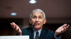 Dr. Anthony Fauci, director of the National Institute of Allergy and Infectious Diseases, speaks during a Senate Health, Education, Labor and Pensions Committee hearing on June 30, 2020 in Washington, DC. Top federal health officials discussed efforts for safely getting back to work and school during the coronavirus pandemic.
