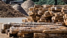 Logs at a sawmill in Chemainus, British Columbia, Canada, on Wednesday, Sept. 3, 2020. Lumber futures for November delivery dropped 4.1% to $670.50 per 1,000 board feet on the Chicago Mercantile Exchange, the lowest for a most-active contract since Aug. 11. Photographer: James MacDonald/Bloomberg