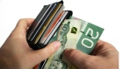 Canadian Money Currency Wallet Spending debt money