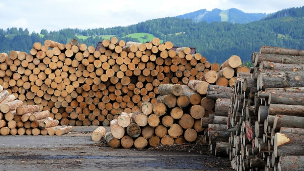 B.C. government, lumber industry to launch softwood ...