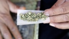 A marijuana joint is rolled