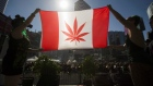 Ottawa tabled legislation on Thursday to legalize recreational marijuana