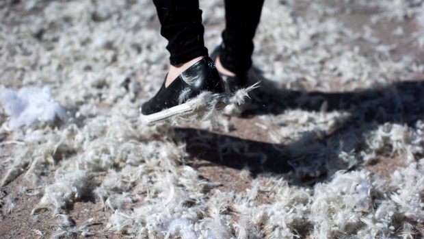 Feathers stick to a woman's shoe as she participates in an organized pillow fight in Vancouver