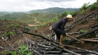 A worker clears land for the replanting of a forest at Changxian County Sino-Forest