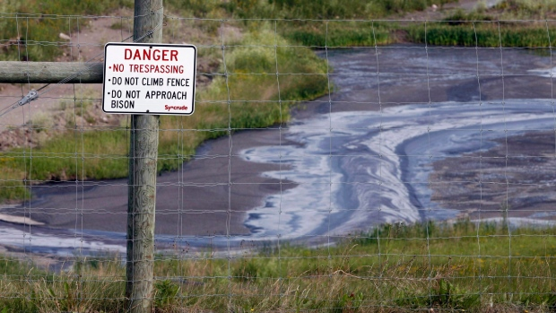 AER charges Syncrude for deaths of 31 great blue herons