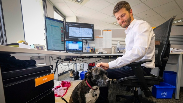 dog-friendly office Calgary Entuitive Corp