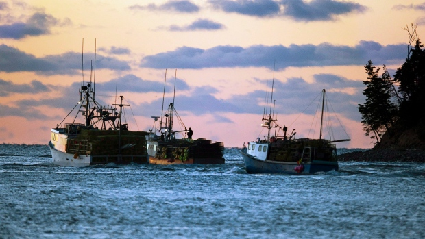 Fishing boats loaded with lobster traps head from Eastern Passage, N.S.