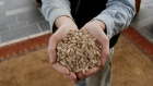 A man holds a handful of wood pellets used to heat his home